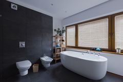 Modern dark bathroom with toilet. And freestanding bathtub Stock Image