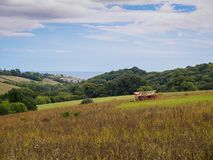 Wildflower Meadow Cornwall. A modern day photo of some fields and coast in Cornwall, that wouldn`t look out of place centuries ago stock photo