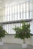 Modern de bouw binnenland met groene installaties Stock Fotografie