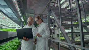 Modern de Microbiologielaboratorium, twee wetenschappers met laptop die de resultaten van onderzoek naar genetisch gewijzigd besp stock footage