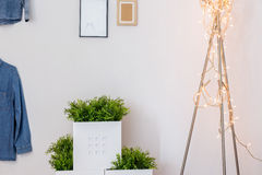 Modern decorations in teen room Stock Photography