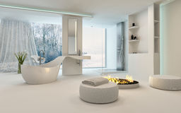 Modern Design Bathroom interior with fireplace Stock Image