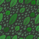 Modern design green leaves texture. Royalty Free Stock Photos
