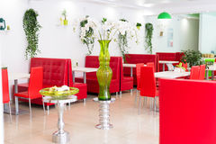 Modern design restaurant interior in white and red colors with plants. Modern design of restaurant interior in white and red colors with plants royalty free stock images