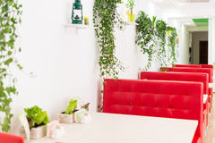Modern design restaurant interior in white and red colors with plants. Modern design of restaurant interior in white and red colors with plants stock photography