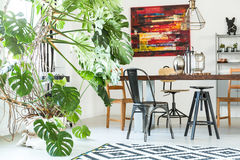 Modern dining room with monstera royalty free stock image