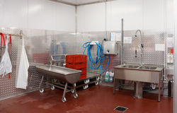 Modern dishwashing room. At food processing plant Stock Photography