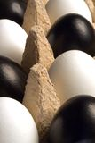 Modern easter decoration. Black and white easter eggs in an egg carton Stock Photo