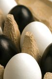 Modern easter decoration. Black and white easter eggs in an egg carton Royalty Free Stock Photos