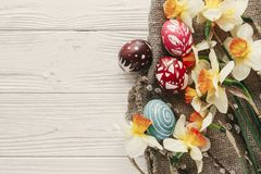 Modern easter flat lay. stylish colorful easter eggs with spring. Flowers daffodils on rustic white wooden background top view. space for text. stylish painted Royalty Free Stock Images