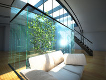 Modern empty interior with plant and sofa Royalty Free Stock Photos