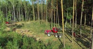 Modern equipment for deforestation, forest harvester