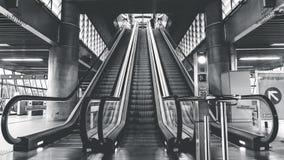 Modern escalators in building