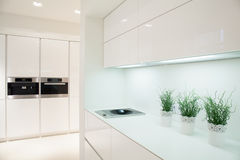 Modern and expensive kitchen interior Royalty Free Stock Photos