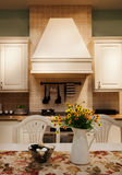 The kitchen 44. The modern family pay attention to design and decoration of the kitchen Royalty Free Stock Photos