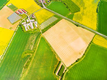 Modern farm with organic produce. Aerial view to green wheat and rapeseed fields and modern farm with organic produce. Agricultural landscape from above Stock Photo