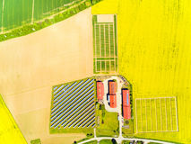 Modern farm with organic produce. Aerial view to green wheat and rapeseed fields and modern farm with organic produce. Agricultural landscape from above Royalty Free Stock Photography