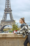 Modern fashion-monger with Christmas tree in Paris, France Stock Photography