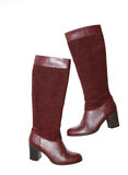 Modern fashionable boots for women Stock Photography