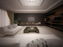Modern fashionable living room with stylish furniture. Stock Photos
