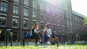 Modern female students chatting while sitting on bench in campus park before lessons. University friends stock video footage
