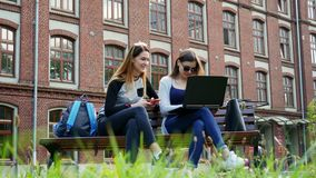Modern female students working together on a laptop on a student project while sitting on bench in campus park before stock footage