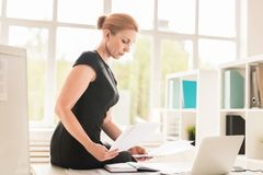 Modern financier. Confident financier with papers or contracts sitting on desk and reading them stock photography