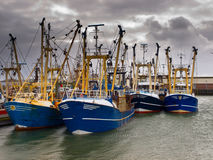 Modern fishing fleet Royalty Free Stock Photos