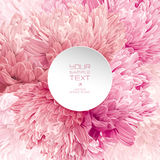 Modern floral background. Modern floral  art - luxurious pink, red and white asters and Chrysanthemums composition with a round paper label for wedding Stock Photos