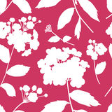 Modern floral blossom seamless pattern Royalty Free Stock Images