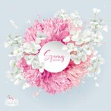 Chrysanthemums and Apple blossom vector arrangement Stock Image