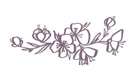 Modern flowers drawing and sketch floral with line-art Isolated on white background Royalty Free Stock Photos