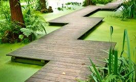 Modern footpath or gangplank over a pond Stock Photos