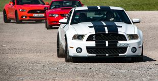 Ford Mustang muscle car. A modern Ford Mustang muscle car royalty free stock image