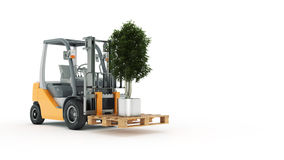 Modern forklift truck with small tree Royalty Free Stock Photos