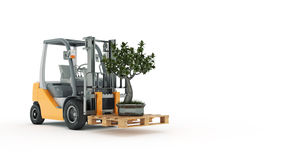 Modern forklift truck with small tree Royalty Free Stock Image