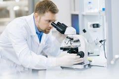 Modern forskare Doing Research i laboratorium royaltyfri foto