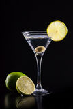 Modern fresh coctail Royalty Free Stock Photos