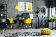 Modern furniture and yellow accents. Gray room with patterned carpet, plants, modern furniture, yellow accents Stock Images
