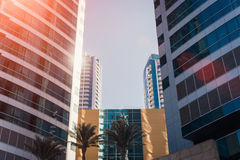 Modern futuristic skyscrapers with palm trees in the front Royalty Free Stock Images