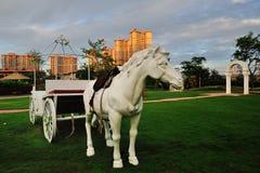 Modern Garden Apartment white horse Royalty Free Stock Images