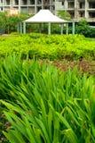 Modern garden landscape Royalty Free Stock Images