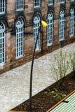 Modern gatalampa i Saverne, Frankrike Royaltyfri Foto