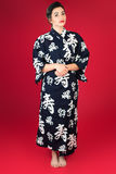 Modern Geishameisje Royalty-vrije Stock Foto's