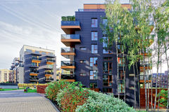 Modern glass apartment buildings and Birch trees Stock Images