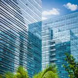 Modern glass skyscraper Stock Images