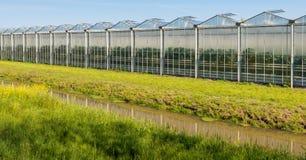 Modern glasshouse in the Netherlands Stock Photo