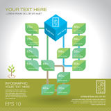 Modern graph design or infographic design template for business. Research data presentation in vector illustration in green ecology theme Royalty Free Stock Photo