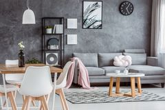 Gray apartment, open dining area. Modern, gray apartment with cozy open dining area and minimalist living room interior with comfortable couch, coffee table and stock photos