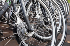 Modern gray bicycles for rent stand in a row Royalty Free Stock Images